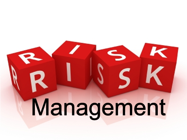 Risk Management, Standards and Risk – A German Approach